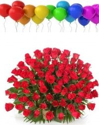 100 air filled Balloons with 100 red roses basket