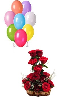 8 coloured Air filled balloons 12 Red Roses basket